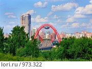 Купить «Живописный мост на фоне зелени Крылатских холмов, Москва», фото № 973322, снято 11 июля 2009 г. (c) Fro / Фотобанк Лори