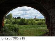 Купить «Вид на деревню из под арки», фото № 985918, снято 18 июня 2009 г. (c) Елена Азарнова / Фотобанк Лори