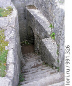 Копорье. Вход на нижний уровень сторожевой башни (2008 год). Стоковое фото, фотограф Виктор Косьянчук / Фотобанк Лори