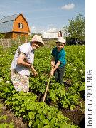 Купить «Ребенок помогает бабушке на даче», фото № 991906, снято 13 июля 2009 г. (c) Куликова Татьяна / Фотобанк Лори