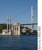 Мечеть в проливе (2009 год). Стоковое фото, фотограф Александр Патрушев / Фотобанк Лори