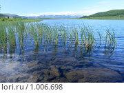 Берег горного озера Узунколь на Алтае, эксклюзивное фото № 1006698, снято 16 июля 2009 г. (c) Яна Королёва / Фотобанк Лори
