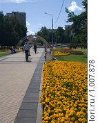 Аллея московского парка с яркими цветочными клумбами (2009 год). Стоковое фото, фотограф Тагильцева Наталия / Фотобанк Лори