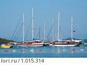 Купить «Яхты в заливе», фото № 1015314, снято 18 июня 2019 г. (c) ElenArt / Фотобанк Лори