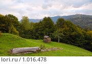 Купить «Сельский пейзаж», фото № 1016478, снято 27 сентября 2008 г. (c) Юрий Брыкайло / Фотобанк Лори