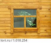 Купить «Окно в бане», фото № 1018254, снято 9 мая 2009 г. (c) astrozebra / Фотобанк Лори