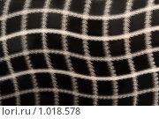 Купить «Металлический фон», фото № 1018578, снято 28 ноября 2008 г. (c) Losevsky Pavel / Фотобанк Лори