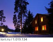 Купить «Деревянный дом в зимнюю ночь», фото № 1019134, снято 20 февраля 2009 г. (c) Losevsky Pavel / Фотобанк Лори