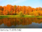 Осенний парк. Стоковое фото, фотограф Losevsky Pavel / Фотобанк Лори