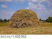 Сельский пейзаж. Стоковое фото, фотограф Наталья Волкова / Фотобанк Лори