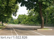 Купить «Киев, место отдыха», эксклюзивное фото № 1022826, снято 3 июля 2009 г. (c) Алексей Котлов / Фотобанк Лори