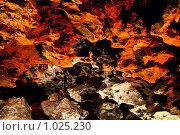 """Купить «""""Коралловый"""" грот, """"Ледяная пещера"""". Кунгур, Пермский край», эксклюзивное фото № 1025230, снято 5 августа 2009 г. (c) Кучкаев Марат / Фотобанк Лори"""