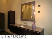 Купить «Роскошный интерьер ванной комнаты», фото № 1033610, снято 31 марта 2009 г. (c) Журавлева Виктория / Фотобанк Лори