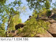 Купить «Скала. Заповедник Столбы. Красноярск», фото № 1034186, снято 9 августа 2009 г. (c) Типляшина Евгения / Фотобанк Лори