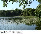 Купить «Озеро», фото № 1037894, снято 20 июня 2009 г. (c) Гнездилова Кристина / Фотобанк Лори