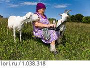 Научные консультанты. Стоковое фото, фотограф Юрий Викулин / Фотобанк Лори