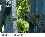 Купить «Защита от воров», фото № 1050686, снято 22 июля 2009 г. (c) Троицкая Алиса / Фотобанк Лори