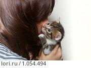 Девушка с котенком. Стоковое фото, фотограф Павел Савин / Фотобанк Лори