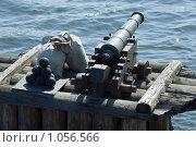 Купить «Пушка на оборонительном заграждении», эксклюзивное фото № 1056566, снято 8 августа 2009 г. (c) Александр Щепин / Фотобанк Лори