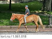 Купить «Мужчина на коне (г. Турку. Финляндия)», фото № 1061018, снято 2 августа 2009 г. (c) Александр Секретарев / Фотобанк Лори