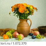 Ноготки и фрукты. Стоковое фото, фотограф Голованова Светлана / Фотобанк Лори