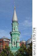 Пермь. Соборная мечеть (2009 год). Стоковое фото, фотограф Вера Веремейчук / Фотобанк Лори