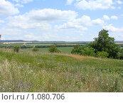 Купить «Луг, поля, горы у горизонта», фото № 1080706, снято 16 июня 2009 г. (c) Емельянова Светлана Александровна / Фотобанк Лори
