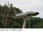 Купить «Самолет  (Швеция)», фото № 1081278, снято 3 августа 2009 г. (c) Александр Секретарев / Фотобанк Лори