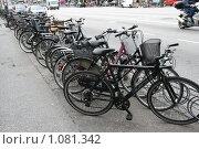 Купить «Дания. Копенгаген. Городской пейзаж. Велосипеды.», фото № 1081342, снято 4 августа 2009 г. (c) Александр Секретарев / Фотобанк Лори