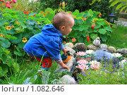 Ребенок. Стоковое фото, фотограф Осиев Антон / Фотобанк Лори