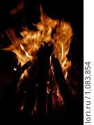 Деревянные поленья горят ярким костром ночью. Стоковое фото, фотограф Полина Бублик / Фотобанк Лори