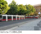 Вена (2009 год). Стоковое фото, фотограф Алина Бучинская / Фотобанк Лори