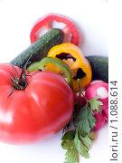 Купить «Свежие овощи и зелень петрушки», фото № 1088614, снято 12 сентября 2009 г. (c) Светлана Кудрина / Фотобанк Лори
