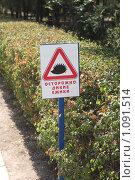 Купить «Осторожно дикие ёжики», фото № 1091514, снято 1 сентября 2009 г. (c) Эдуард Магданов / Фотобанк Лори