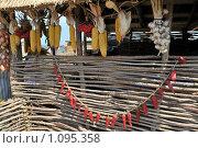 Купить «Деревенский натюрморт», фото № 1095358, снято 13 сентября 2009 г. (c) Игорь Архипов / Фотобанк Лори