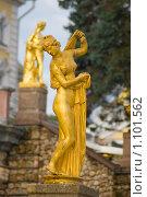 Купить «Петергоф. Афродита (Венера) Каллипига», фото № 1101562, снято 16 сентября 2009 г. (c) Вячеслав Беляев / Фотобанк Лори