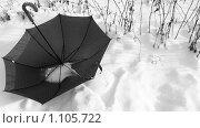 Купить «Забытый зонт», фото № 1105722, снято 28 января 2009 г. (c) Усова Светлана  Юрьевна / Фотобанк Лори