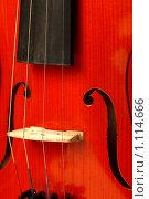 Купить «Фрагмент акустической скрипки», фото № 1114666, снято 23 мая 2008 г. (c) Александр Паррус / Фотобанк Лори