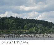Купить «Старый лодочный причал в Сортавала», фото № 1117442, снято 12 августа 2008 г. (c) Алла Виноградова / Фотобанк Лори