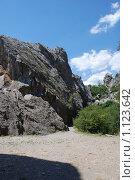 Купить «Крым, Никита», фото № 1123642, снято 31 июля 2008 г. (c) Смыгина Татьяна / Фотобанк Лори