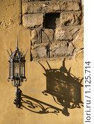 Готический фонарь (2008 год). Стоковое фото, фотограф foliart / Фотобанк Лори