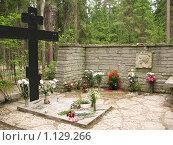Могила Анны Ахматовой на кладбище в посёлке Комарово в пригороде Санкт-Петербурга, фото № 1129266, снято 27 июня 2009 г. (c) Заноза-Ру / Фотобанк Лори