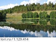 Купить «Зеркальный водоем с отражающимся лесом и небом», фото № 1129414, снято 11 августа 2009 г. (c) Игорь Гришаев / Фотобанк Лори