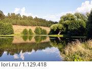 Купить «Зеркальный водоем с отражающимся лесом и небом», фото № 1129418, снято 11 августа 2009 г. (c) Игорь Гришаев / Фотобанк Лори