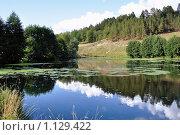 Купить «Зеркальный водоем с отражающимся лесом и небом», фото № 1129422, снято 11 августа 2009 г. (c) Игорь Гришаев / Фотобанк Лори