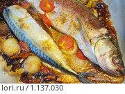 Купить «Жареная рыба с овощами», фото № 1137030, снято 11 августа 2009 г. (c) Яков Филимонов / Фотобанк Лори