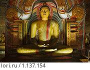 Купить «Древняя статуя сидящего Будды в Пещерном Храме. Дамбулла, Шри Ланка», фото № 1137154, снято 24 сентября 2009 г. (c) Дмитрий Рухленко / Фотобанк Лори