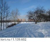 Борисовские пруды. Стоковое фото, фотограф Анатолий Сверчков / Фотобанк Лори