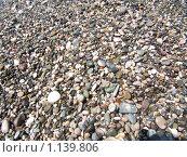 Камни на пляже. Стоковое фото, фотограф Дмитрий К / Фотобанк Лори