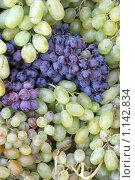 Фон из спелого винограда. Стоковое фото, фотограф Gagara / Фотобанк Лори